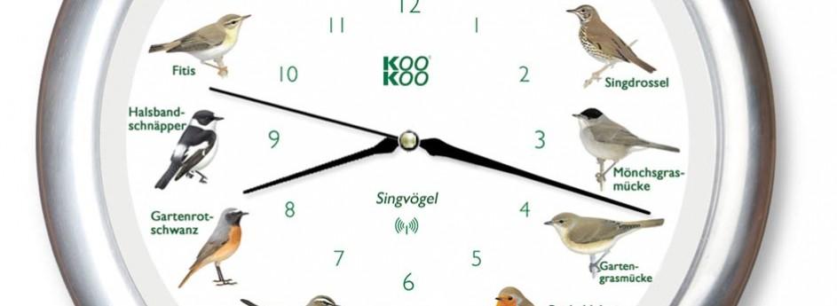 Vogelstimmen-Uhr mit Funk – Alurahmen
